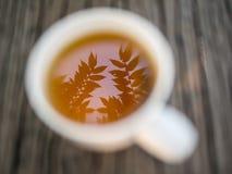 在长木凳的Moring茶。 免版税库存图片