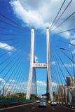 在长江的大佛寺桥梁 免版税库存图片