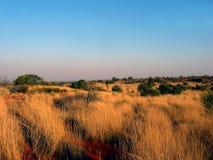 在内地草平原 库存图片