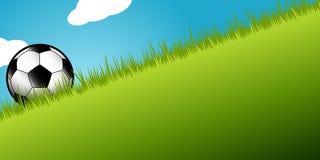 在长的草的足球 免版税库存照片