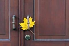 在门把手的一片枫叶 免版税库存照片