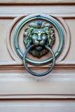 在门狮子的细节 免版税库存图片