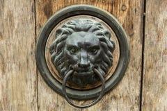 在门的狮子头 免版税图库摄影
