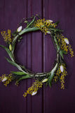 在门的花卉分支 库存照片