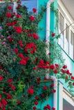 在门面的美丽的英国兰开斯特家族族徽在老房子的窗口街道的 免版税库存照片