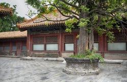 在门,北京,中国里面的紫禁城 免版税库存图片