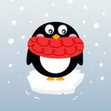 在闪耀的冰山的逗人喜爱的冬天企鹅 库存图片