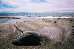 在闪耀的沙子的一个岩石 免版税图库摄影