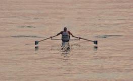 在防堤里面的唯一划船者在Humber河附近的安大略湖在黎明之后 库存照片