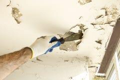 在防护手套的建筑工人` s手从天花板取消老油漆与小铲 免版税库存照片