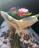 在阳光下的花束 免版税图库摄影