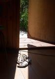 在阳光射线的白色凉鞋  库存照片