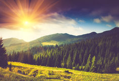 在阳光的美好的夏天山风景 库存照片