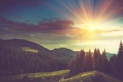 在阳光的美好的夏天山风景 免版税库存照片