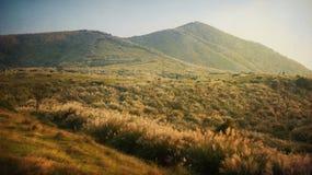 在阳明山国家公园国家公园的美好的片刻峰顶的一收藏在台湾,位于对台北东北部,选择聚焦 库存图片