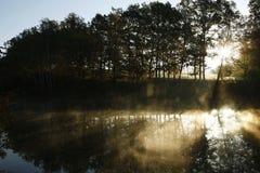 在阴霾池塘侧视图之上 免版税库存图片
