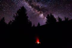 在阵营的火在森林里在满天星斗的天空下 银河 库存图片