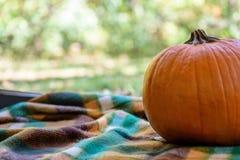在阵营的秋天 库存图片