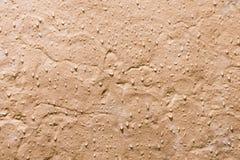 在阵雨的一个石瓦片 免版税库存图片