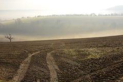 在阿伦德尔附近的有薄雾的乡下。英国 免版税库存照片