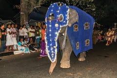 在阿努拉德普勒,斯里兰卡的大象游行 免版税库存图片