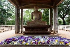 在阿努拉德普勒,斯里兰卡的Samadhi菩萨雕象 库存图片