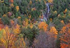 在阿地伦达山脉的瀑布,秋天纽约 库存照片