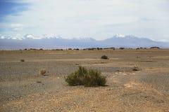 在阿塔卡马沙漠虚度谷或瓦尔de la月/月球风景 免版税库存图片