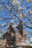 在阿姆斯特丹中心的老美丽如画的博物馆 库存图片