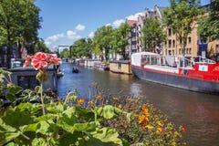 在阿姆斯特丹运河附近的一朵红色花有小船和大厦的 免版税库存照片