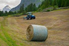 在阿尔卑斯备草粮收获有Granta Parey山背景视图  库存图片