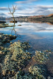 在阿尔斯沃特湖在湖区,英国的冷和冷淡的早晨 库存图片