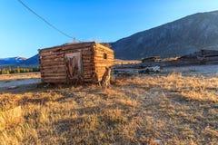 在阿尔泰山的一个村庄尾随守卫农场 免版税库存图片