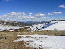 在阿尔泰山的雪 免版税库存照片