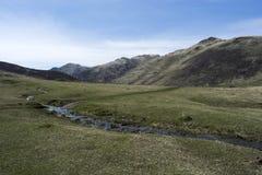 在阿尔泰的山麓小丘的春日 免版税库存照片