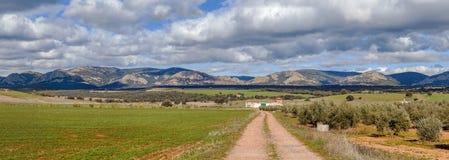 在阿尔瓦萨特,西班牙省的风景  免版税库存图片