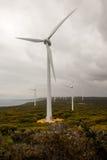 在阿尔巴尼附近的风力场视图 免版税图库摄影