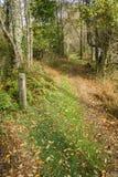 在阿巴拉契亚足迹的一个足迹标志 免版税库存图片