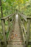 在阿巴拉契亚足迹的人行桥 免版税库存图片