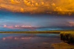 在阿拉帕霍野生生物保护区的平安的夜间 免版税库存照片