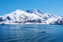 在阿拉斯加、雪和山的春天 库存照片
