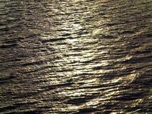水在阿拉斯加 库存照片