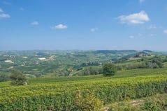 在阿斯蒂,意大利附近的山麓 库存照片