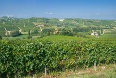 在阿斯蒂,意大利附近的山麓 免版税库存图片