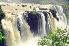 在阿根廷的边界的伊瓜苏瀑布和 图库摄影