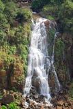 在阿根廷的边界的伊瓜苏瀑布和 库存照片