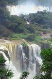 在阿根廷的边界的伊瓜苏瀑布和 免版税库存照片
