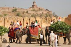 在阿梅尔宫殿,斋浦尔,印度的旅游大象 库存图片