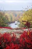 在阿科底亚国家公园弄湿弯曲的路在秋天 免版税图库摄影