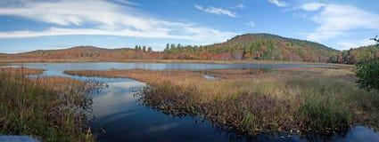 在阿迪朗达克池塘的秋天颜色 免版税库存图片